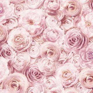 Wild Rose Blush 901700